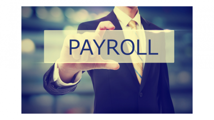 Payroll Taxes From the Employer and the Employee's Perspective